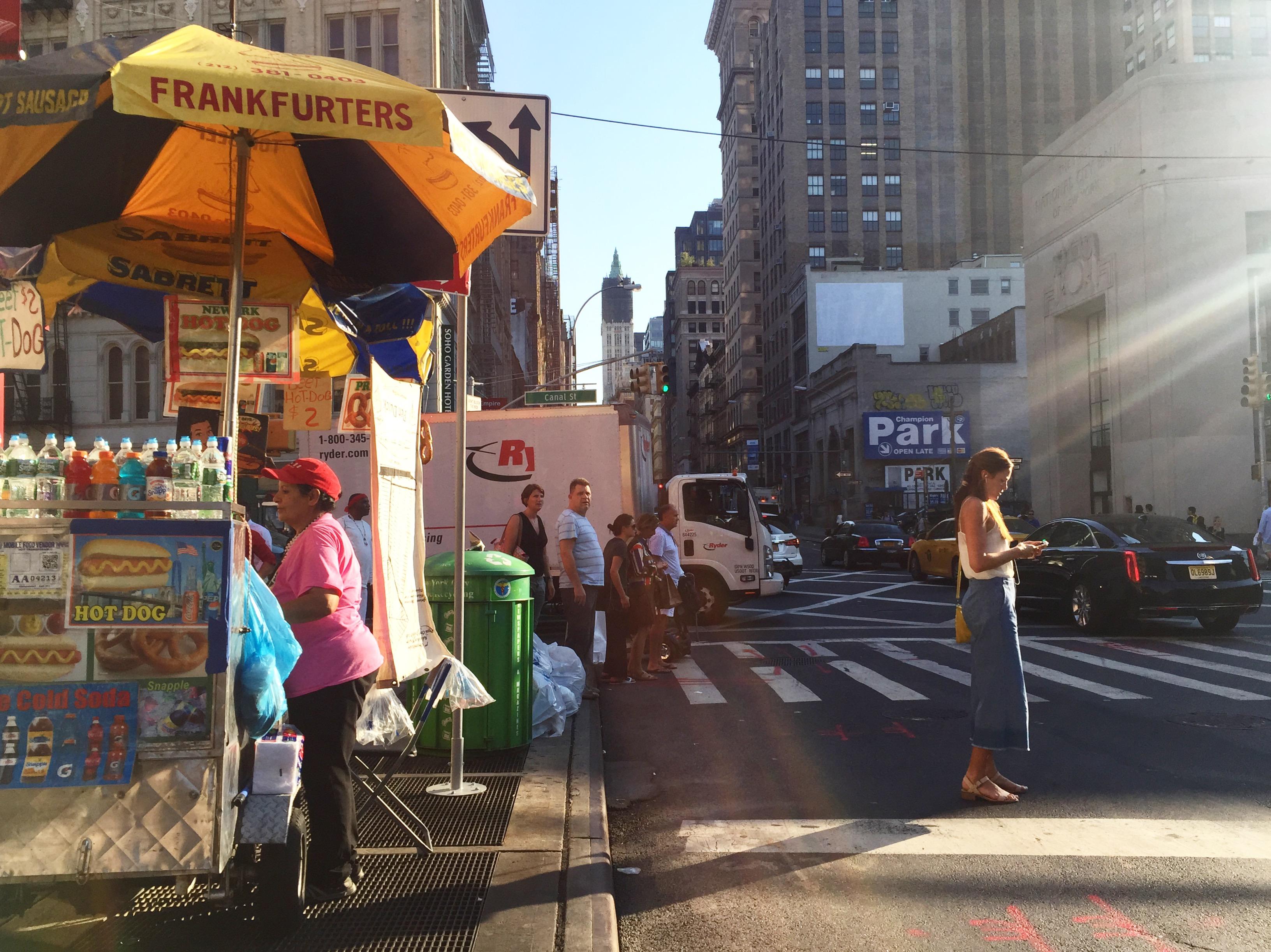 thelazytrotter, the lazy trotter, new york