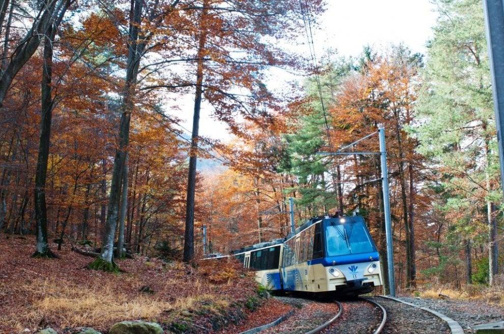 dove andare in vacanza a novembre, treno del foliage