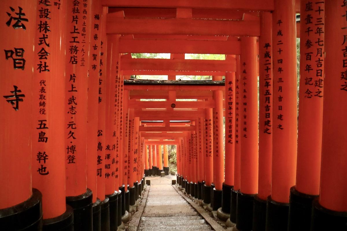 cosa vedere a kyoto, giappone, fushimi inari, kyoto