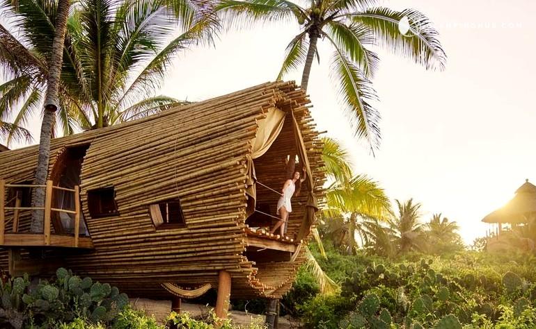 case sull'albero, casa sull'albero, dormire su un albero
