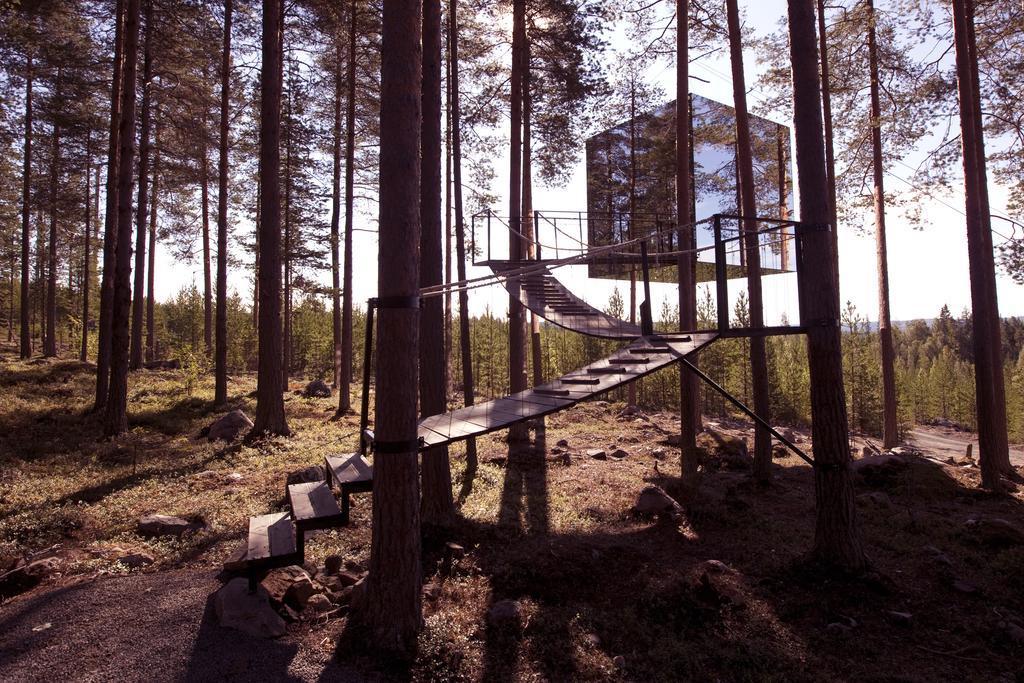 mirror cube, case sull'albero