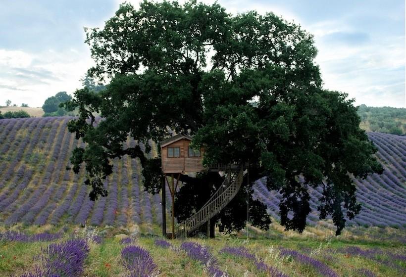 suite bleue, dormire sugli alberi, case sull'albero, casa sugli alberi