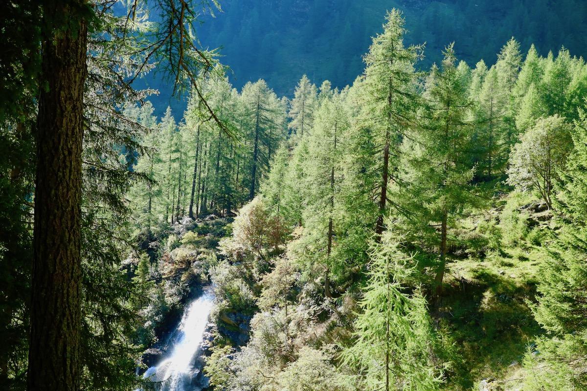 Cosa vedere in Trentino, cosa vedere in val di sole, trentino alto adige, trekking in trentino