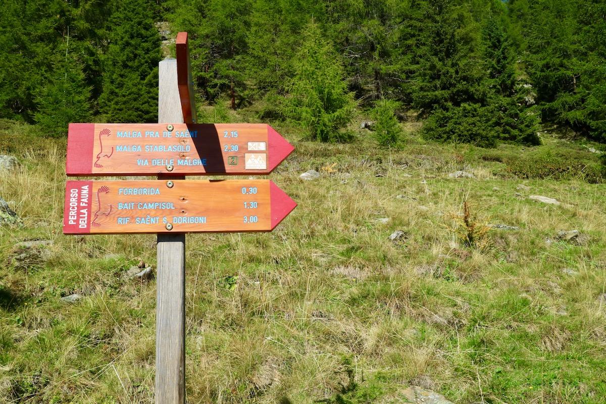 Cosa vedere in Trentino, cosa vedere in val di sole, trentino alto adige,