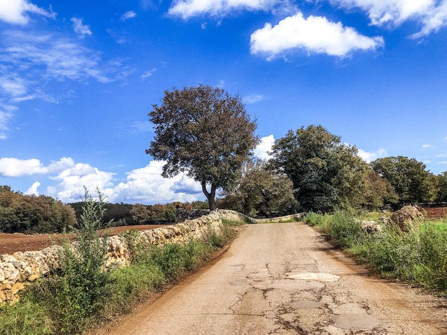 alberobello-puglia-valle-d-itria-cosa-vedere