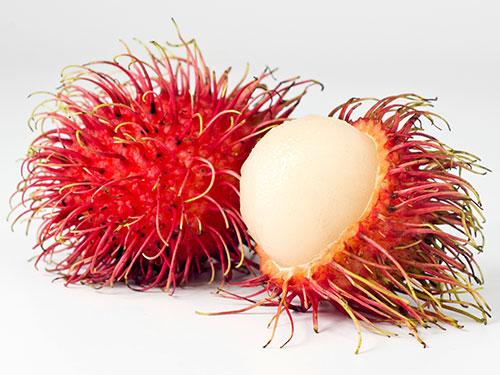 frutti-esotici-frutta-esotica-frutta-strana-rambutan