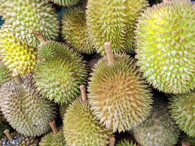 frutti-esotici-frutta-esotica-frutta-strana-durian