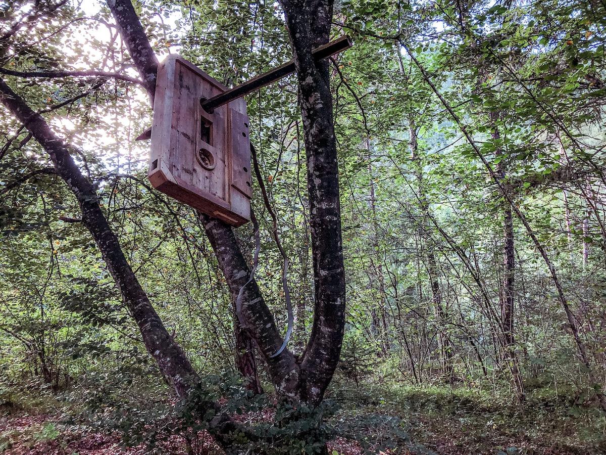 ledro-land-art-valle-di-ledro