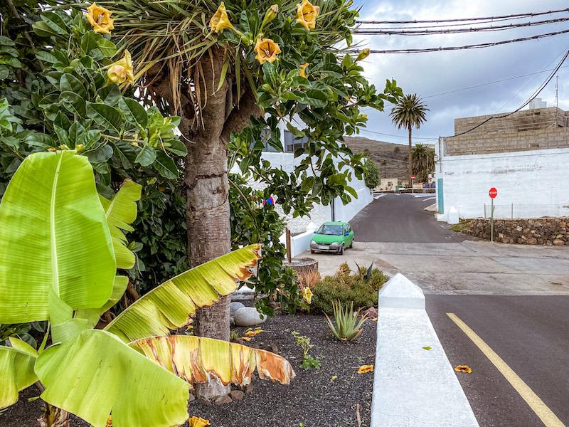 Haria-Lanzarote-villaggio