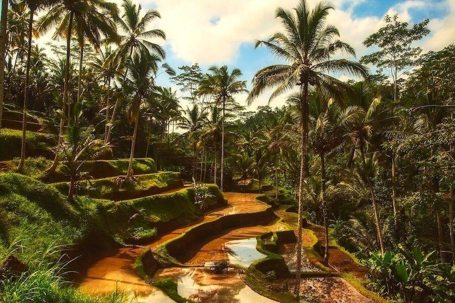 Bali_quando_viaggiare